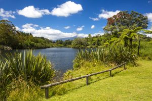 Things to do in North island
