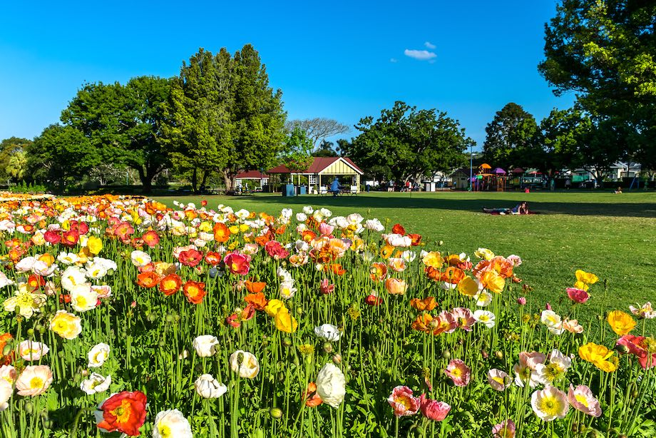 Things for garden lovers to do in Toowoomba